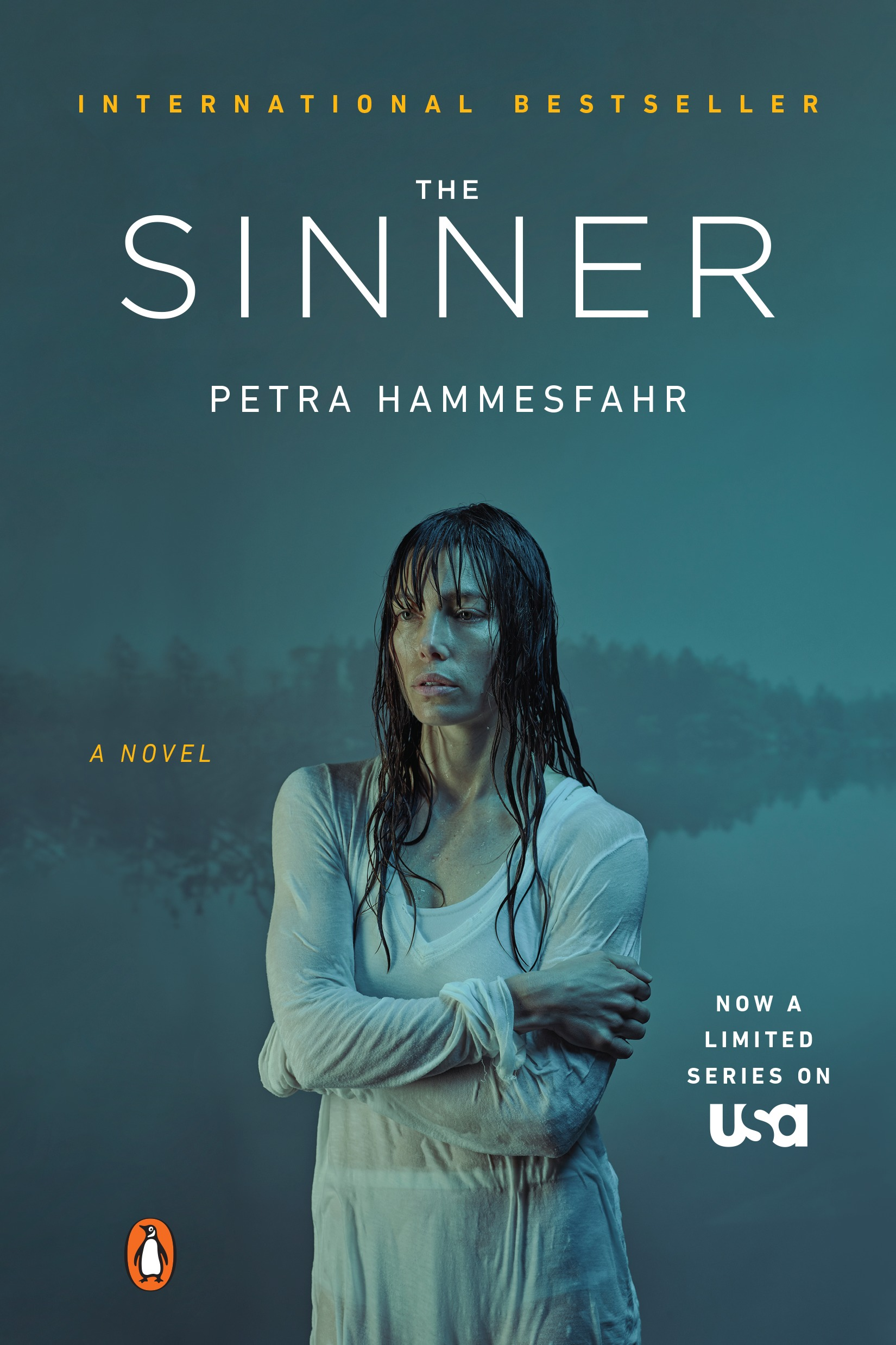 Book Cover Series Books : Quot the sinner by petra hammesfahr is being re released with